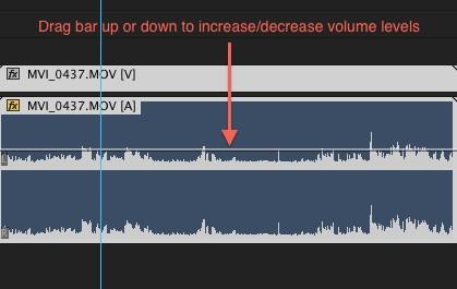 premiere - volume adjust